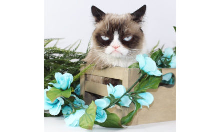 Are You Grumpy? (Part 2)